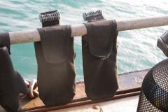 Дайвинг на Баренцевом море
