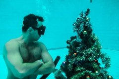 Елка под водой
