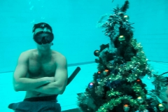 Елка в бассейне