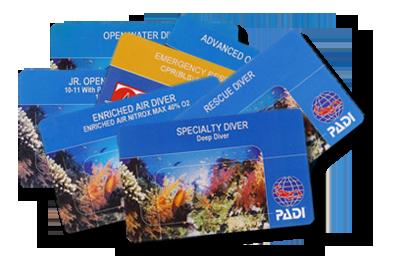 Карточка сертификат PADI