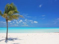 дайвинг Багамы