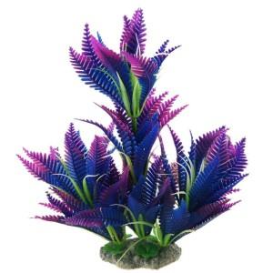 морские растения